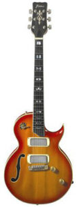 Framus 1974 Jan Akkerman guitarpoll