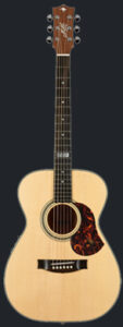 Maton EGB808TEt guitarpoll