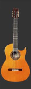 Felipe Conde Al di Meola guitarpoll