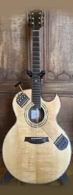 Borghino Shakti Guitar guitarpoll