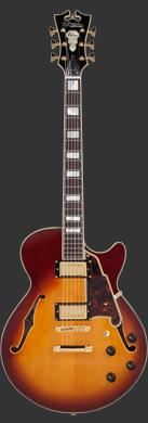D'Angelico Deluxe Kurt Rosenwinkel SS guitarpoll