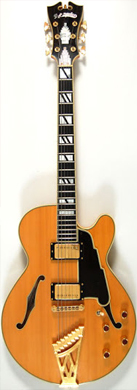 D 'Angelico NYSS-3 guitarpoll