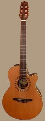 Takamine NP65C guitarpoll