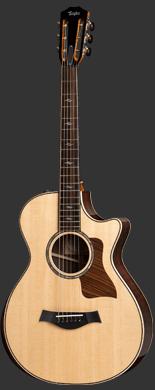 Taylor 810 Brazilian guitarpoll