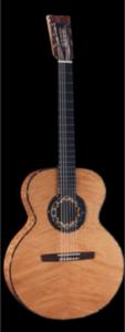 Wechter Guitars Our Lady guitarpoll