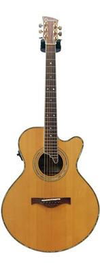 Charvel 1990 625C Electro Acoustic guitarpoll