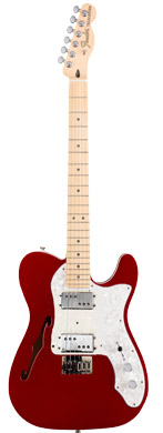 Fender Telecaster Thinline guitarpoll