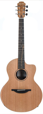 Lowden L-250 guitarpoll