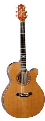 Takamine LTD-92 guitarpoll