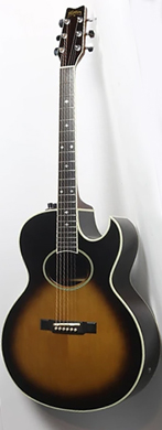 Washburn 1980 Tanglewood electro acoustic guitarpoll