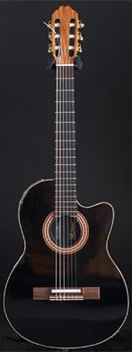 Gibson 1981 Chet Atkins guitarpoll