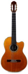 Gibson Chet Atkins Spanish Electric Guitarpoll