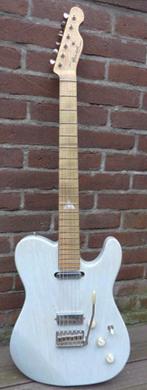Panucci Leif de Leeuw custom guitarpoll