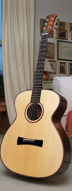 Stefan Sobel 2013 Mark-2 MS guitarpoll