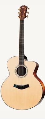 Taylor LKSM-6 guitarpoll