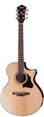 Ibanez AE900-NT guitarpoll