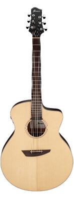 Ibanez PA300E guitarpoll