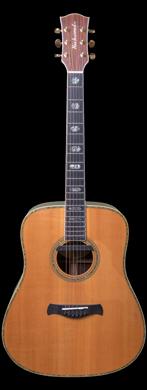 Richwood 2015 D70-VA guitarpoll