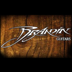 logo brandin guitarpoll