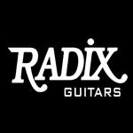 logo radix guitarpoll