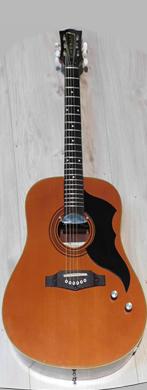 Eko 1970 Ranger 6 electric acoustic guitarpoll