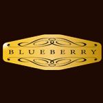 logo blueberry guitars