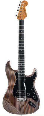 Piet Visser Erwing Zebranocaster guitarpoll