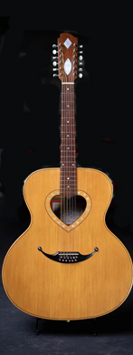 Zemaitis 12-string acoustic guitarpoll
