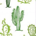 logo cafe de cactus guitarpoll