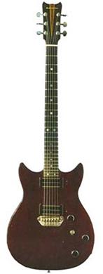 Bill Lewis 24-fret guitarpoll